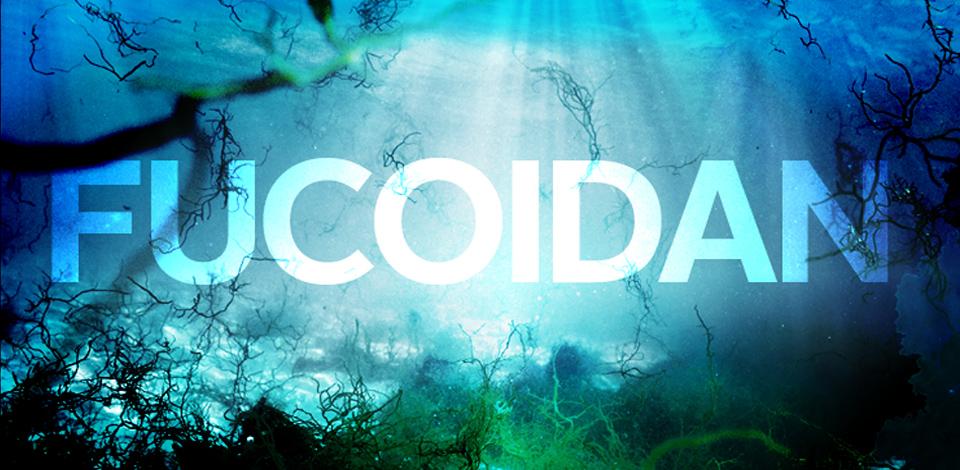 Tác dụng của thuốc fucoidan – sự thật điều thị ung thư