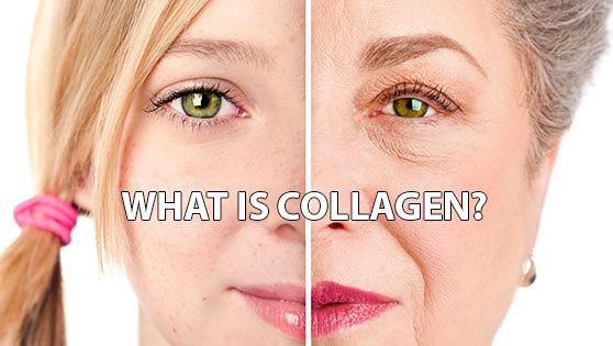 Collagen là gì ?