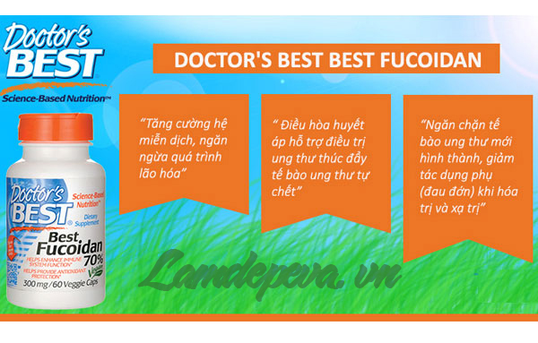 cong-dung-doctors-best-best-fucoidan-70%