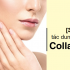 collagen-1