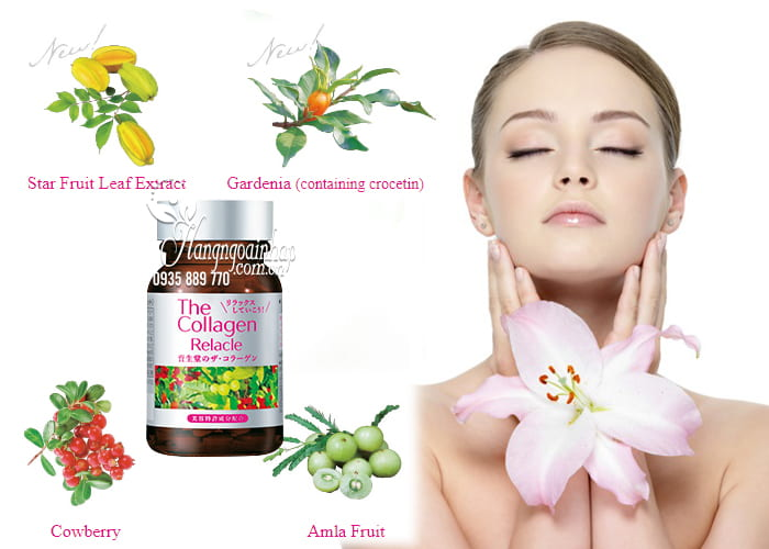 the-collagen-relacle-shiseido-dang-vien-vi-trai-cay-cua-nhat-4