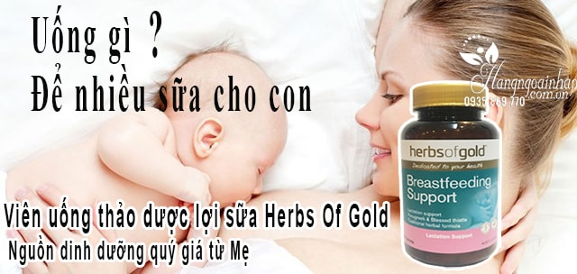 vien-uong-loi-sua-Herbs-Of-Gold-Breastfeeding-Support-cua-uc3